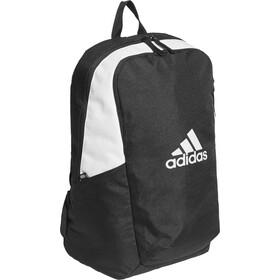 adidas TERREX Parkhood Daypack black/black/white